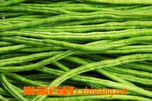 豇豆性状 功效主治和营养价值